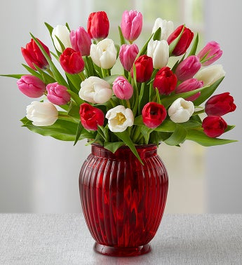 Sweetest Love Tulips + Free Red Vase
