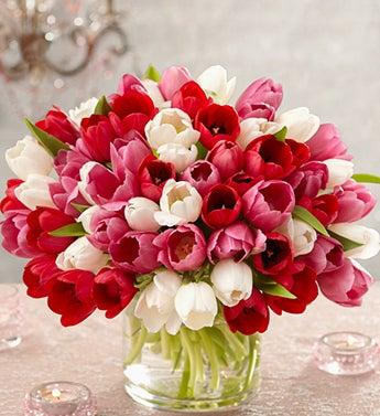 Abundant Elegance Tulip Bouquet, 60 Stems