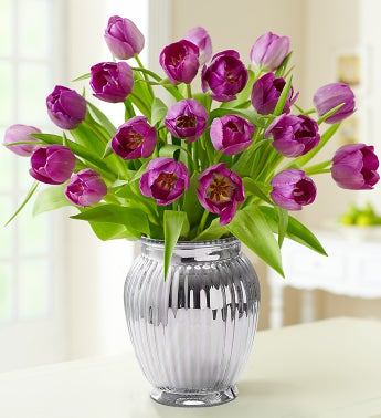 Signature Purple Tulips, 20 Stems + Free Vase