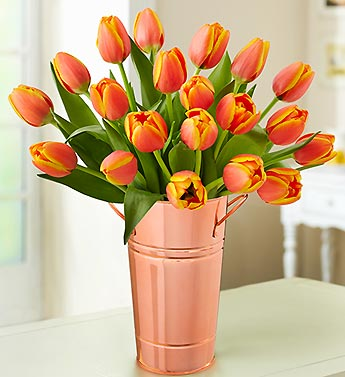 Orange Sunset Tulips, 20 Stems