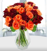 Passion of Red and Orange Roses