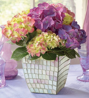 Hydrangea in Mosaic for Sympathy