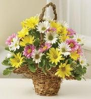 Spring Daisy Basket