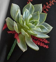 Wine Country Boutonniere
