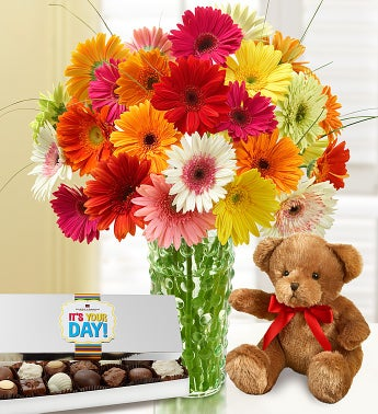 Gerbera Daisies with Bear & Free Chocolate