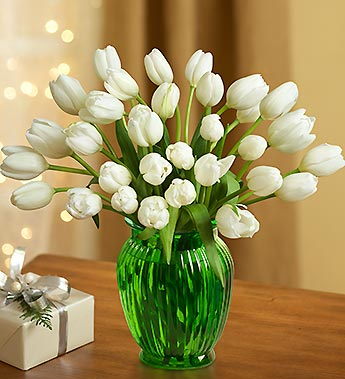 Winter Snowflake Tulips, 30-60 Stems