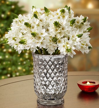 Star of Bethlehem Bouquet