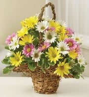 Pastel Daisy Basket
