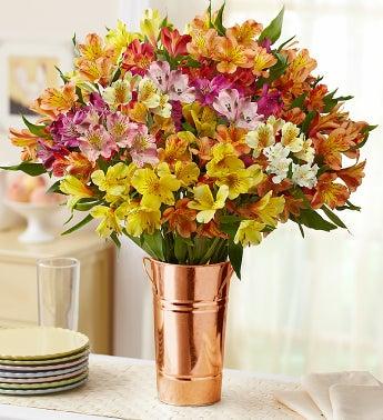 Peruvian Lilies, 50-100 Blooms