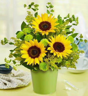 Sunflower Bouquet in Green Tin