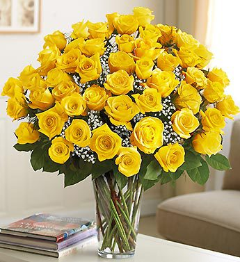Ultimate Elegance? Long Stem Yellow Roses