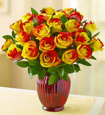 Crimson Roses, 12-24 Stems