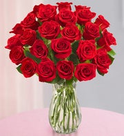 Red Roses, 12-24 Stems