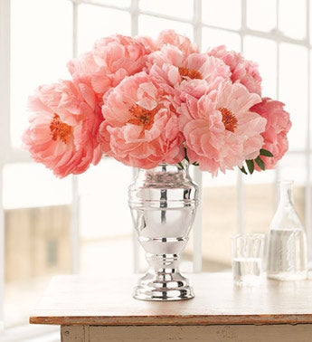 coral peonies in classic silvered vase