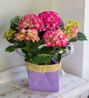 Hydrangea Gift Bag Bouquet