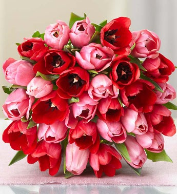 30-Stems Sweetest Love Tulips - Bouquet Only