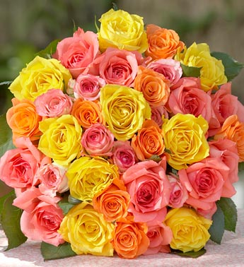 multicolored fair trade roses