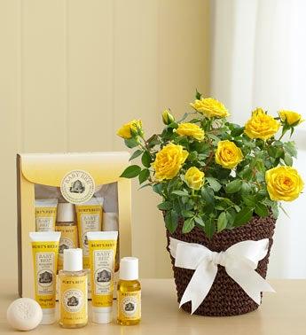 Burt's Bees Baby Bee Gift Set