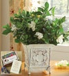 Grand Gardenia? for Sympathy