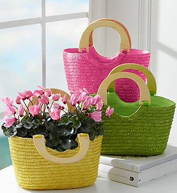 Sunny Days Bag of Blooms