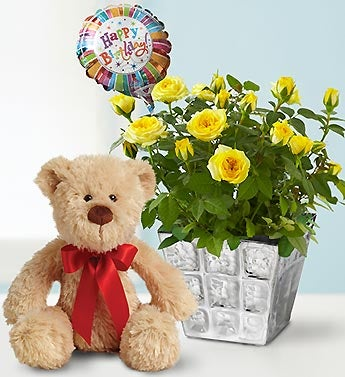 Happy Birthday Rose with Bear and Balloon