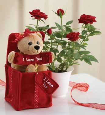 I Love You Bear with Mini Rose