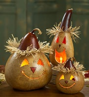 Pumpkin Patch Lighted Gourds