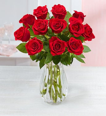 One Dozen Red Roses + Free Vase