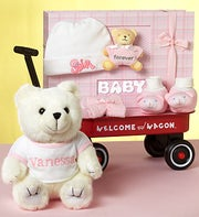 Personalized New Baby Girl Welcome Wagon
