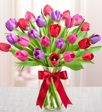 Tulips for Your Valentine?